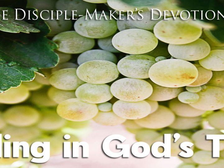 Abiding in God's Truth – The Disciple-Maker's Devotional